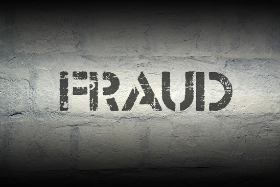 Fighting Fraud For The Taxpayers